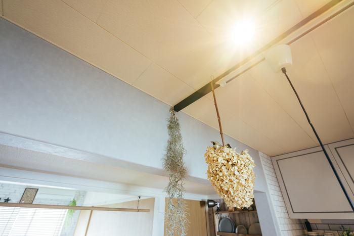 照明の取り付け位置が替えられたらいいのに……と思うことはありませんか。  ラブリコやディアウォールなら、傷つけることなくダクトレールを取り付けられるので、おしゃれな多灯照明にも挑戦できます。 吊り下げ収納やディスプレイもOK。