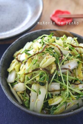 一人暮らしに嬉しいポリ袋調理で完成するサラダです。材料はカットしたら、調味料とあわせ袋に入れて振るだけ!レシピさえ覚えれば、ほかのお野菜でも美味しくできます。