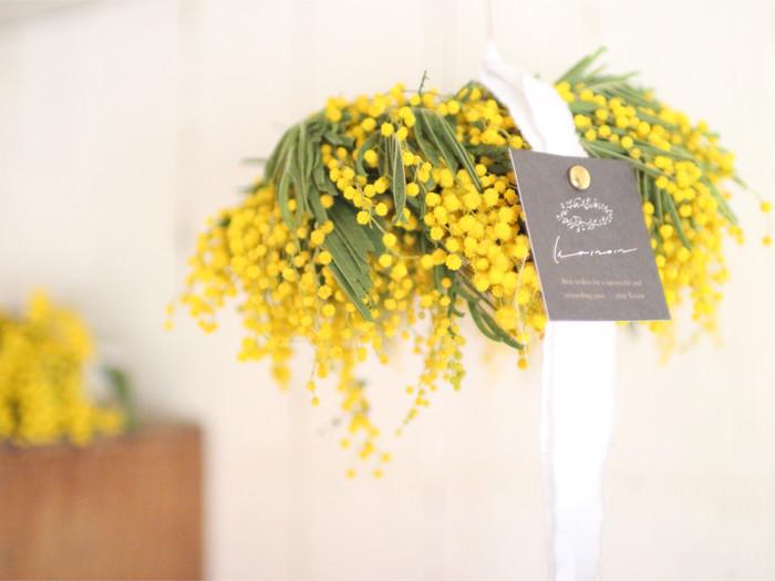 そろそろ黄色が恋しい季節。今年もお部屋に「ミモザ」の花を迎えませんか