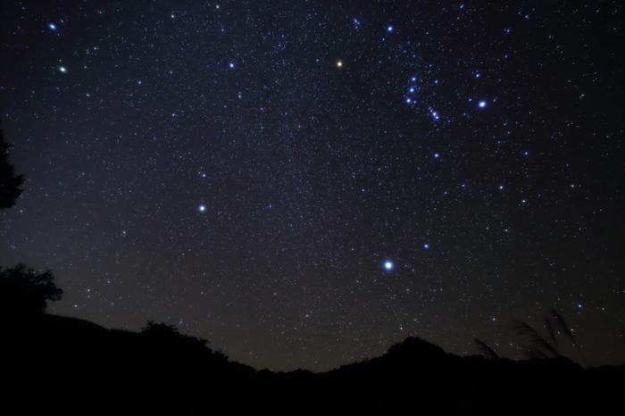 オリオン座の左下にあるのがおおいぬ座。シリウスが犬の鼻先あたりにあり、前足の先と尾の部分に2等星が輝いています。数ある星座の中でもわかりやすい形をしているので、星座図を覚えておくと簡単に見つけられると思います。