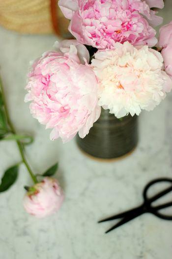 せっかく買ったお花ですから、できるだけ長く楽しみたいですよね。お花を長持ちさせるポイントは、次の3つでOKです。全部守らないと!と気負わずに、できるに越したことはないと、ゆるく楽しみましょう。