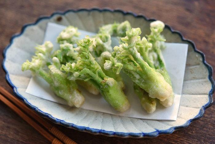 はかまを取って下処理を済ませたタラの芽は、まずはやはり天ぷらで。タラの芽の天ぷらは、片栗粉と小麦粉を同量合わせることで、サクッと軽い食感が出ます。180℃の高温で揚げましょう。
