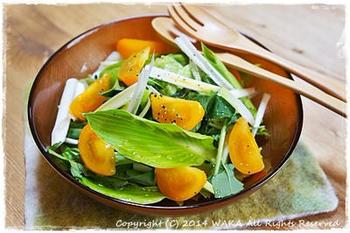 うるいを生食するサラダ。春クレソンや彩り野菜とともにおしゃれに。サラミやカリカリベーコンを散らしても、いいコクが出ます。
