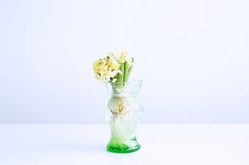 春の生命力を最も感じされてくれるのは、やはり植物。ぜひ、テーブルに飾ってみましょう。こちらは、デンマークの「house doctor(ハウス ドクター)」の水耕栽培用のフラワーベース。生き生きとした植物の成長がよく見えます。
