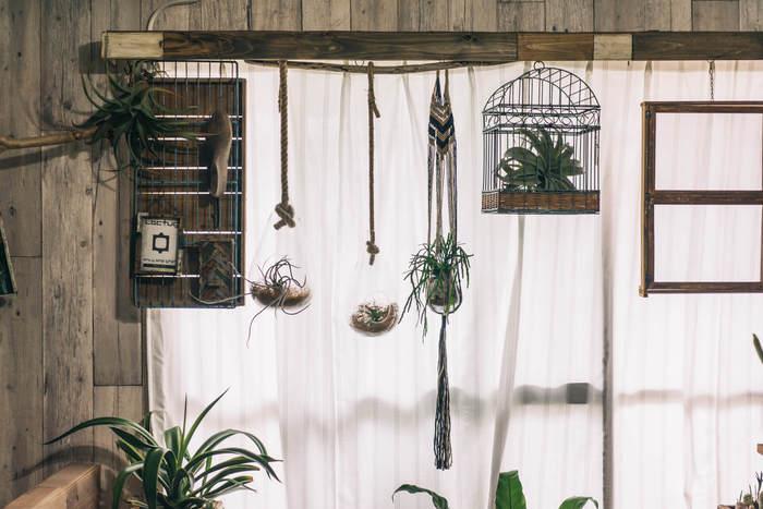 廃材を組み合わせてカーテンレールを隠したアイデア。ヴィンテージ小物がかっこ良く映える窓辺に。 植物だけでなく、いろいろな雑貨を吊るして楽しんでみて。