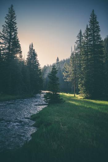 就寝前、落ち着きたいとき、リラックスしたい時には自然の音の中で過ごすのが一番。仕事の疲れもナチュラルに癒されて、次の日からまた元気に活動できるようになるでしょう。