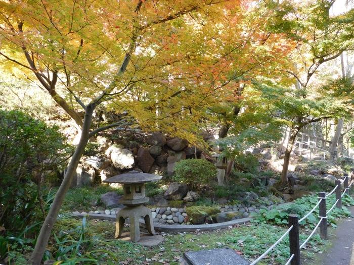 等々力渓谷の環境を活かして作庭された日本庭園は、広い庭の中を巡りながら鑑賞する回遊式庭園です。様々な植物が植えられた庭園内を歩きながら、石灯籠や竹林など日本ならではの造形美をじっくりと鑑賞できます。等々力渓谷公園の地図は以下のリンク先のページをご覧ください*