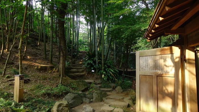 かぶき門をくぐると美しい竹林の回廊があり、奥へ進むと書院があります。