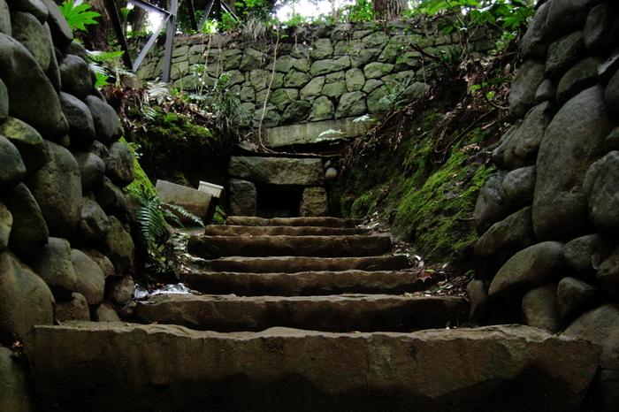 玉沢橋を過ぎてさらに歩いていくと、渓谷の左岸崖面に「等々力渓谷三号横穴」が見えてきます。古墳時代末期~奈良時代にかけてつくられた横穴墓で、東京都の史跡に指定されています。日本の歴史的建造物ににふれながら散策できるのも、等々力渓谷ならではの魅力です。