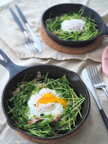 時間のない、忙しい朝にぴったり。包丁をつかわず、キッチンばさみで豆苗をカットしてつくれる、手軽な巣ごもりレシピです。  半熟の卵を少しずつ割りながら豆苗と絡めて食べたり、一度に豆苗と混ぜたりと、その日の気分で食べ方をアレンジして、おいしく野菜をいただきたいですね。