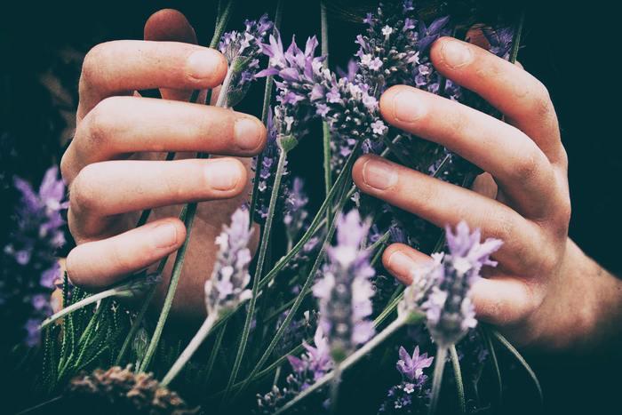 エッセンシャルオイル(精油)は、植物の花や葉、果実やその皮、根、種子、樹皮などから、人の心身にとって有効な成分を取り出した貴重なエッセンスです。効能は香りによって異なり、鎮静作用や血行促進、疲労回復、除菌殺菌など実にさまざま。最近では医療の現場でも、更年期の女性や妊産婦の不安軽減、精神安定などにアロマテラピーが活用され始めています。