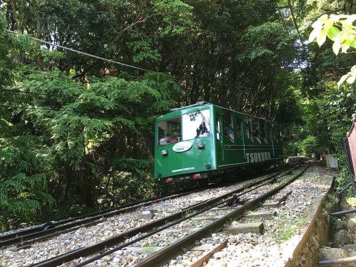 男体山側の筑波山神社から御幸ヶ原までを結ぶケーブルカーもおすすめ。全長1,634mの距離を所要時間8分。四季を通じて、車窓から自然を眺めることができます。