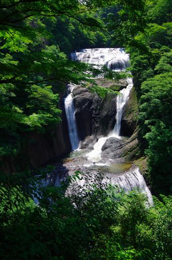 日本三名瀑のひとつに数えられる「袋田の滝」は、茨城を訪れたら一度は足を運びたい自然スポットのひとつです。JR水郡線の「袋田駅」から、バスやタクシーで約10分ほどの比較的アクセスしやすい場所にあります。