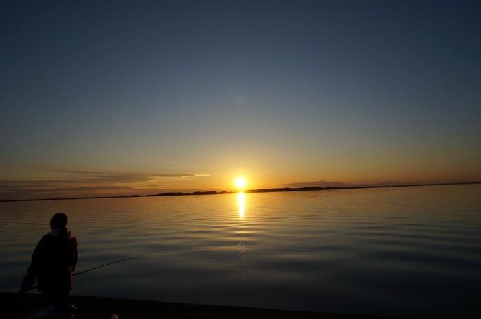 釣りスポットとしても有名な霞ケ浦。水深が平均4mと浅く、ワカサギやコイ、ハゼの他、ブルーギルやブラックバスなどの外来魚も生息しています。沈む夕日を見ながらの釣りというのも大人の楽しみですね。