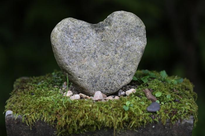 鳥居の近くには、ハート型の石があります。静寂に包まれた神社で、自然のパワーを感じられそうです。