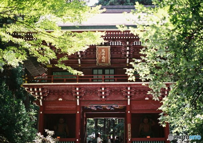 日本有数のパワースポットとも言われている「御岩神社(おいわじんじゃ)」は、御岩山のふもとの霊験あらたかな神社。ここに祀られている神さまは、188柱。ここへお詣りするだけで、日本の神さまほぼ全てにお詣りできるとも言われています。