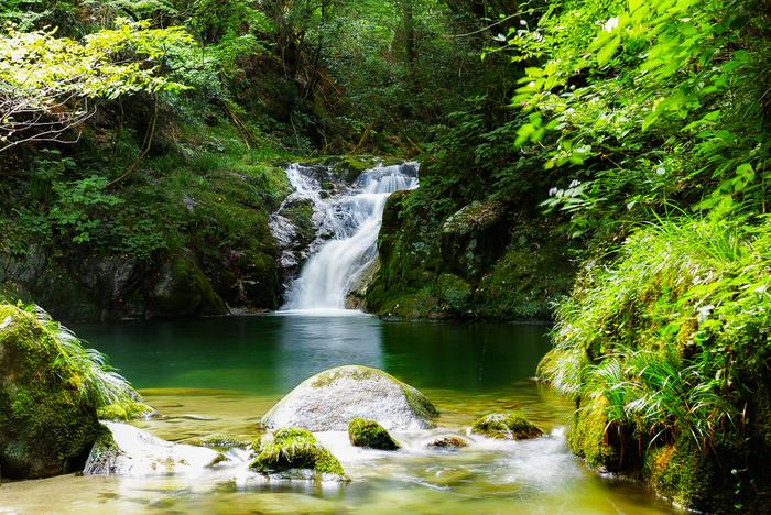 ハイキングにぴったりなのが、高萩市の「花貫渓谷(はなぬきけいこく)」です。花貫ダムから名馬里ヶ淵(なめりがふち)、小滝沢キャンプ場にかけた遊歩道は、美しい景観が続く気持ちの良い道。