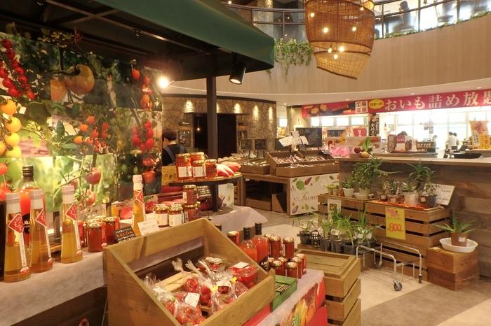 茨城の名産のひとつ、さつまいも。県内最大の産地として有名な行方市にあるのが、「なめがたファーマーズヴィレッジ」です。廃校になった小学校の跡地に建てられた施設では、さつまいもをはじめ、珍しいイタリアン野菜からピクルスなどの加工品まで購入することができます。お野菜の新しい食べ方を発見したい方も、きっと満足できるはず。