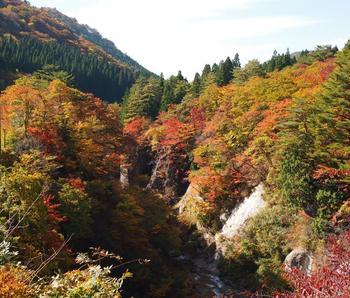 渓谷を覆う紅葉が美しいグラデーションを描く名勝です。川沿いのトレッキングコースは全長約2kmながら、滝や吊り橋など変化に富み、川のせせらぎを耳にしながら気軽に自然を満喫できます。