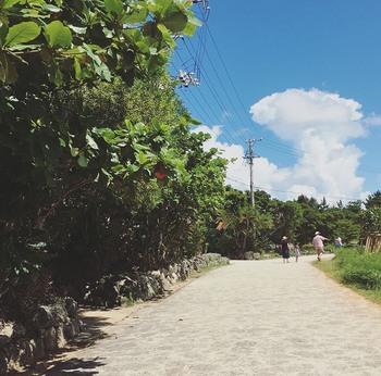 やちむんに出会える場所として、沖縄県内で有名な「やちむんの里」。那覇空港より車で約70分ほどの読谷村にある、独立した19の工房が軒を連ねている地域です。  沖縄ならではの植物に囲まれた石畳の道でつながり、足を進めるだけで非日常感が味わえます。