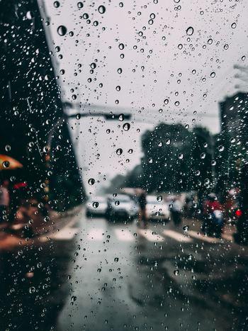 どれだけ大切に使っていても、突然の雨に降られたり、飲みものをこぼしてしまったりすることがあります。革は水と相性が悪く、シミになったり縮んでしまうことも。そんな不測の事態にはどうすれば良いのかご紹介します。