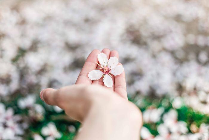春は、鼻や目の不調や頭痛やめまいといった症状が起こりやすい季節と言われています。春の養生法を上手に取り入れて、心地よい身体に導いていきましょう!