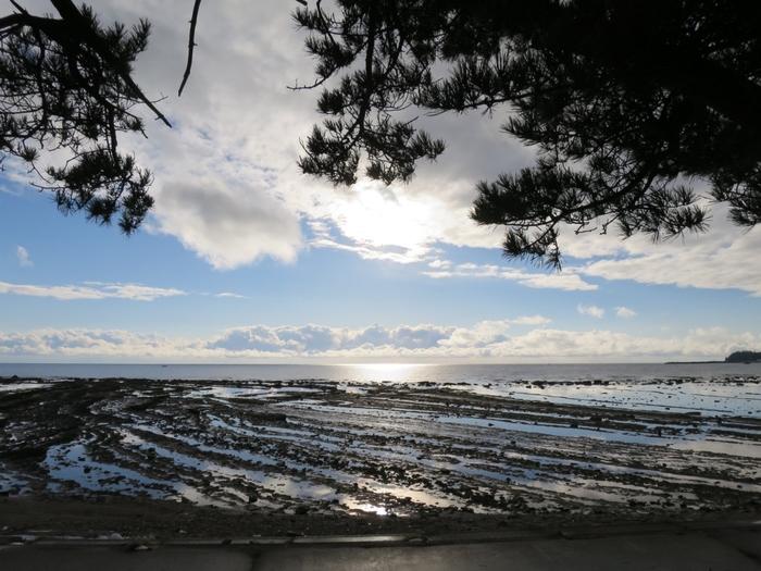 """""""鬼の洗濯板""""とも呼ばれる「鵜ノ崎海岸」は、「日本の渚100選」に選ばれている美しい海岸です。ここを訪れるなら干潮の時がおすすめ。潮が引くと姿を見せる独特の形をした海底は、約1,000万年前の地層が隆起したものです。地層が波の侵食を受けた際に柔らかい地層が削られ硬い地層が残ったため、このような形になったと言われています。"""