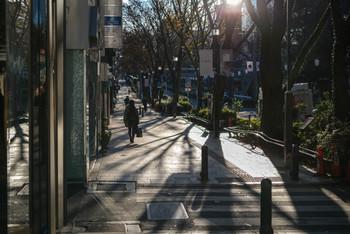 表参道には、おしゃれなカフェやレストランがたくさんあります。海外からの観光客も多く、国際色も豊か。歩いているだけでどこかの外国のようなおしゃれな雰囲気を楽しめる街といってもいいでしょう。また、原宿まで歩いて行けるなど、アクセス面も良好でお買い物にも便利。渋谷駅からも地下鉄なら数分で到着です。にぎやかな原宿や渋谷で買い物を楽しんだあと、表参道の路地に入って落ち着いたカフェでゆっくりするのもオススメ♪