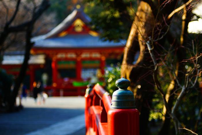 鶴岡八幡宮に長谷寺、高徳院の大仏に小町で食べ歩き。そして山歩きをしたり海を眺めたり…都心から約一時間で訪れることができる鎌倉はたくさんのワクワクであふれています。