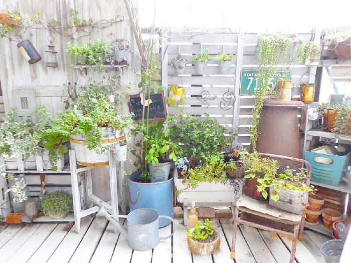 植物が育つ温度は、20℃を基準にプラスマイナス10℃。日差しが強くなる季節は、ベランダなどのコンクリートの上に直接置くと高温になるので、すのこなどを敷いたり、棚に置いたりしましょう。