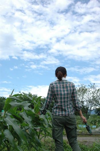 市民農園に参加する。 野菜の成長以上に、土や虫たちを相手の作業にとまどうことがあっても、新しい仲間とのコミュニケーションから解決することがほとんど。収穫した野菜の物々交換も楽しい!