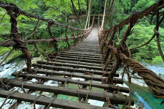 徳島県三好市西祖谷山村にある「祖谷のかずら橋」。かずら橋とは蔦(つた)類で作られた吊り橋のことを言います。橋の隙間から下の川が見える上に、一歩踏み出すたびにユラユラと揺れるのでスリル満点です。落ちないか心配ですが、きちんとメンテナンスはさせているので安心して渡ることができます。