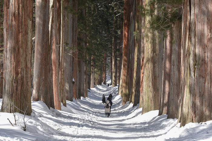 冬は同じくスタートは奥社で、九頭龍社→宝光社→火之御子社→中社とまわれば、最後の中社で5社の御朱印をいただけますが、雪多い時期はなるべく控えた方が良さそう。