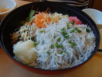 片瀬江ノ島駅から歩いて10分ほどのところにある「とびっちょ本店」は、しらす問屋こだわりの味が楽しめる人気店。「釜揚げしらす丼」に使われている釜揚げしらすは、天然塩で塩分濃度を低めに茹で揚げているそう。卵の黄身と特製ポン酢をかけるオリジナルの食べ方で召し上がれ。