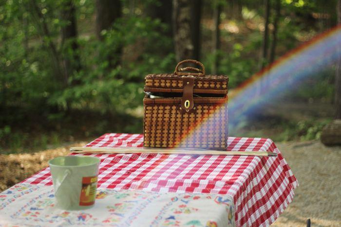 自然の中で過ごすピクニックは楽しいけれど、家族全員分のお弁当を準備するのが大変。張り切ってあれもこれも作ると、出かける前から疲れてしまいます。一番大事なのは心にゆとりを持つこと。せっかくの休日は、頑張らないお弁当を持ってピクニックに出かけてみましょう。