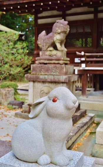 うさぎは多産なことで有名で、治承二年(1180年頃)には中宮(日本の天皇の妻)も、岡崎神社で安産を祈願したそう。えんむすびはもちろん、新しい家族とのご縁もお祈りしたいですね。