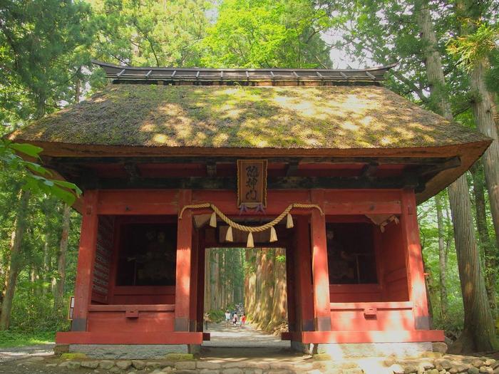 奥社の入口から天然記念物に指定されている樹齢約400年の、大木杉の参道を約1km歩くと随神門(画像)に着きます。そこから約1kmで、天手力雄命(あめのたぢからおのみこと)をご祭神とする奥社に。