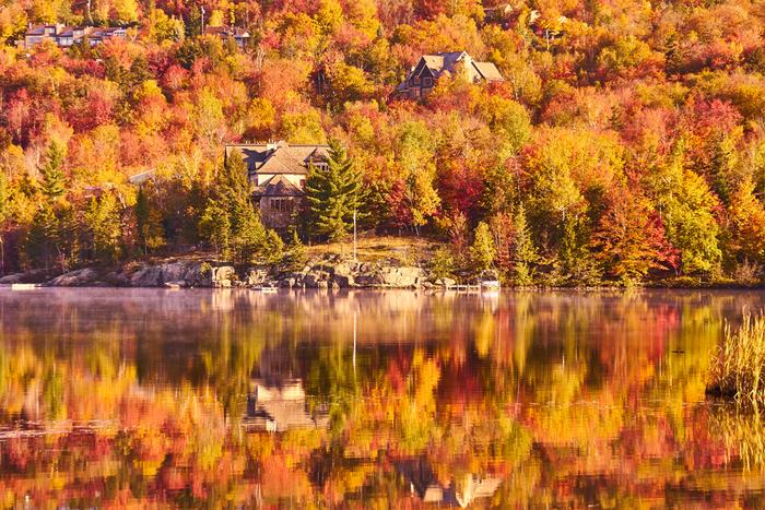 カナダの国旗のシンボルでもあるメープルの葉が一斉に色づき、大地全体が燃え上がるような景色を見ることができるローレンシャン高原の紅葉。赤やオレンジ、黄色に色づくメープルの葉は、人の顔ほどの大きさがあるので、日本の紅葉よりもダイナミックで、宝石を散りばめたような独特の美しさがあります。