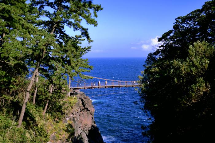 城ケ崎と言えば、吊り橋を観光スポットから外したくありません。岩場を渡る吊り橋は、スリリングでダイナミック。記憶に残る体験ができそう。