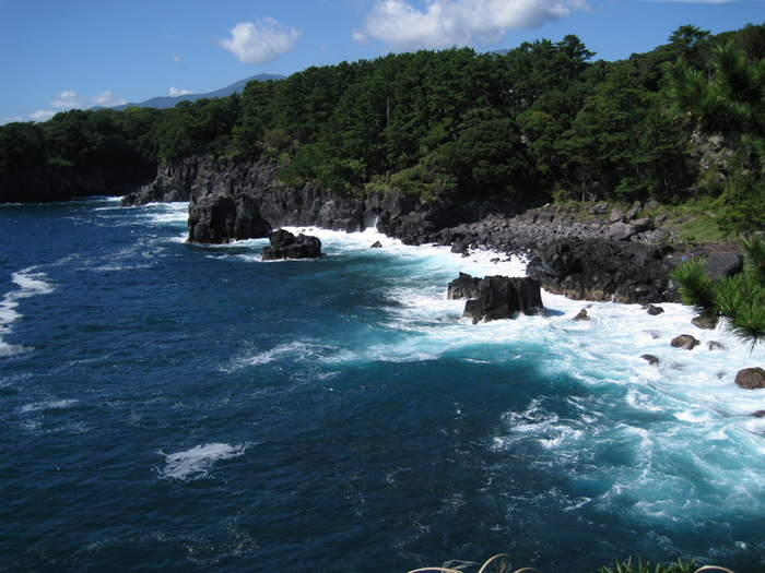 海水浴など夏のイメージが強い伊豆半島。ですが、城ケ崎にはそれ以外の魅力もたっぷりあります。海に入らなくても楽しめるダイナミックな城ケ崎の観光スポットをご紹介致します。