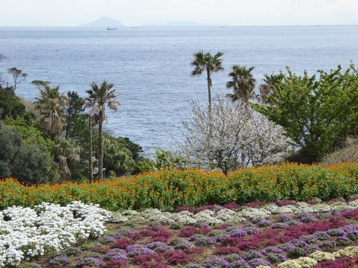 美術館のお庭は美しいフラワーガーデンになっています。四季折々の花々と、伊豆の海が織りなす絶景をゆったりと楽しみたい。