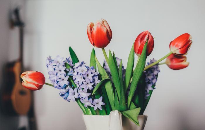 定番の赤いチューリップもピッチャーに入れると、肩の力が抜けて気分一新。そこに相性のいい色味である紫のお花を加えることで、よりぽかぽかカラー「赤」の魅力を引き出すことができます。