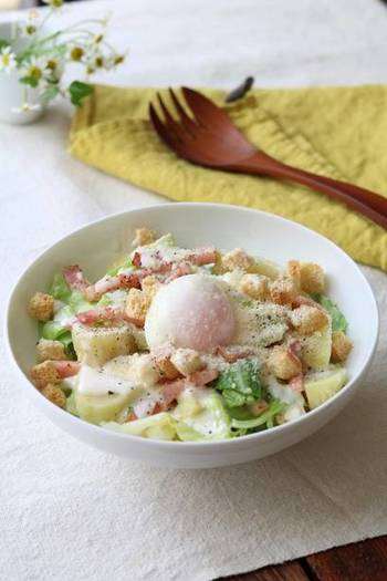 色んなサラダがつくれちゃう。人気のキャベツサラダレシピ【15選】