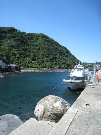 城ヶ崎海岸の観光で気を付けたいのが、遊覧船の休止の事。平成27年11月30日(月)から城ヶ崎海岸の海からの観光はお休みしているので、ご注意くださいね。