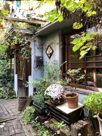 東京メトロ半蔵門線・都営地下鉄浅草線の押上駅から歩いて15分ほどの住宅街にある「Spice Cafe(スパイスカフェ)」は、蔦の絡まる外観がステキなお店です。
