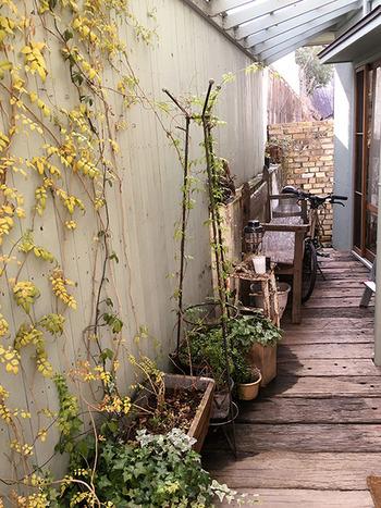 こちらはお店の玄関アプローチですが、スペースがあれば小さなベンチを置いたりするのも可愛いかも。