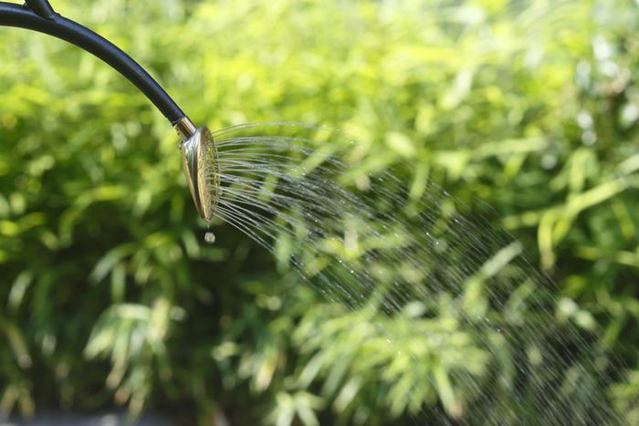 きゅうりは90%が水分と言われるだけに、その育成状態にも水の与え方が大きく影響します。もともと乾燥には弱い植物ですが、プランターで育てる場合は地植えよりもさらに乾燥しやすいため注意が必要です。また、乾燥を恐れて水を与え過ぎ、用土がずっと湿り続けているのも根を傷める原因になります。水やりには、「土の表面が乾き始めたら、プランターの底から余分な水が出てくるまでしっかり与える」というメリハリが大切。毎日の天候や気温によって、様子を見ながら調節しましょう。