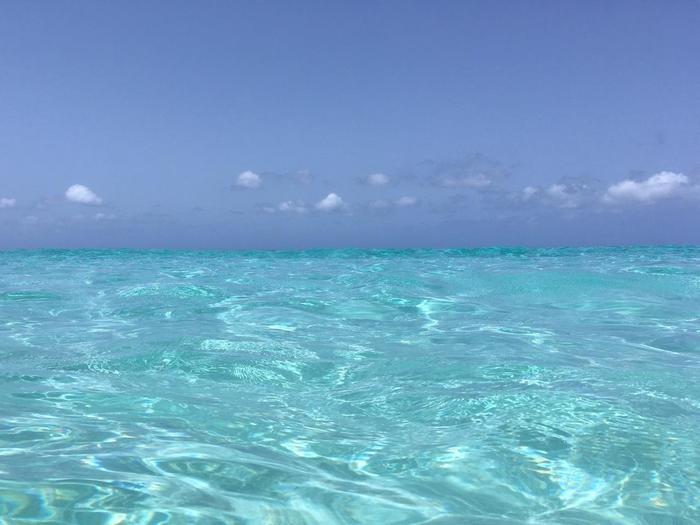 ここまでの透明度を誇る海は他にはなかなかないとのこと。フォトジェニックな旅がしたい、という方には、ぜひ一度訪れてほしい場所です。