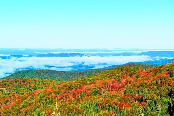ローレンシャン高原は紅葉の名所として知られていますが、実はその大きさは四国と同じくらい!どこまでも続く色彩豊かなメープルの森を目にすることができます。  ゴンドラから、ボートから、様々な場所から見えるメープルの紅葉は思わずため息がでるほどの美しさです。