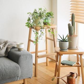 観葉植物やフラワーインテリアなどは、シンプルなスツールの上に置くだけで統一感のある空間に。高さの違う同じシリーズのスツールを活用すれば、簡単におしゃれなインテリアが完成しますね。